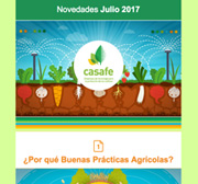 Newsletter Julio 2017