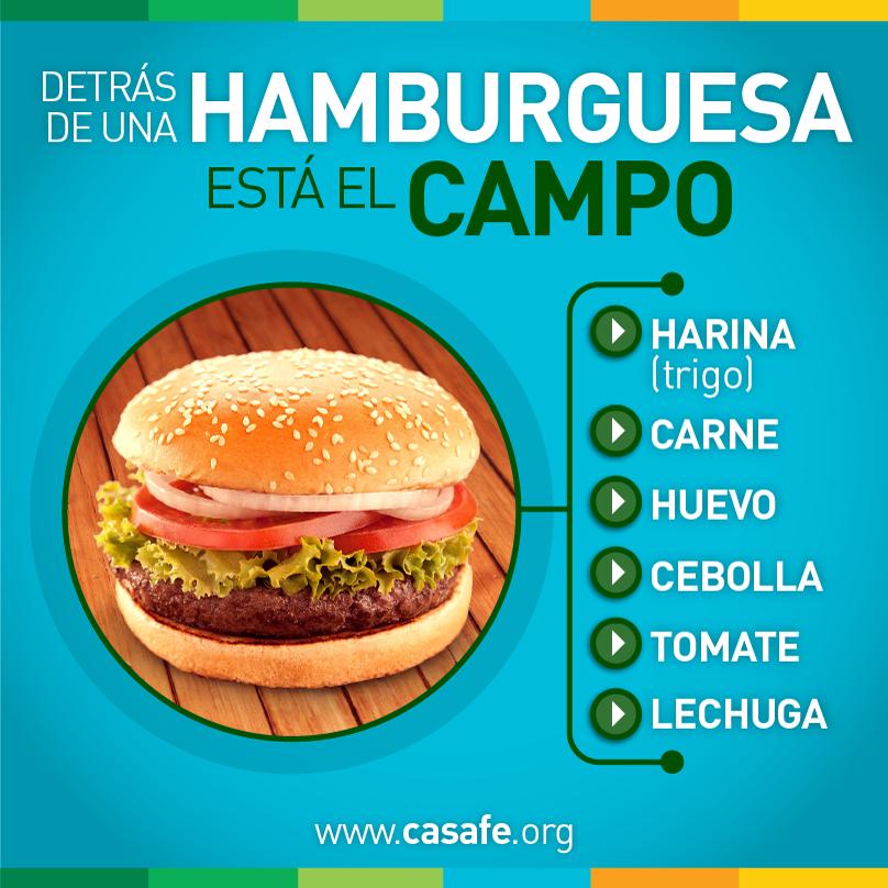 Detras de una hamburguesa agroquimicos y alimentos