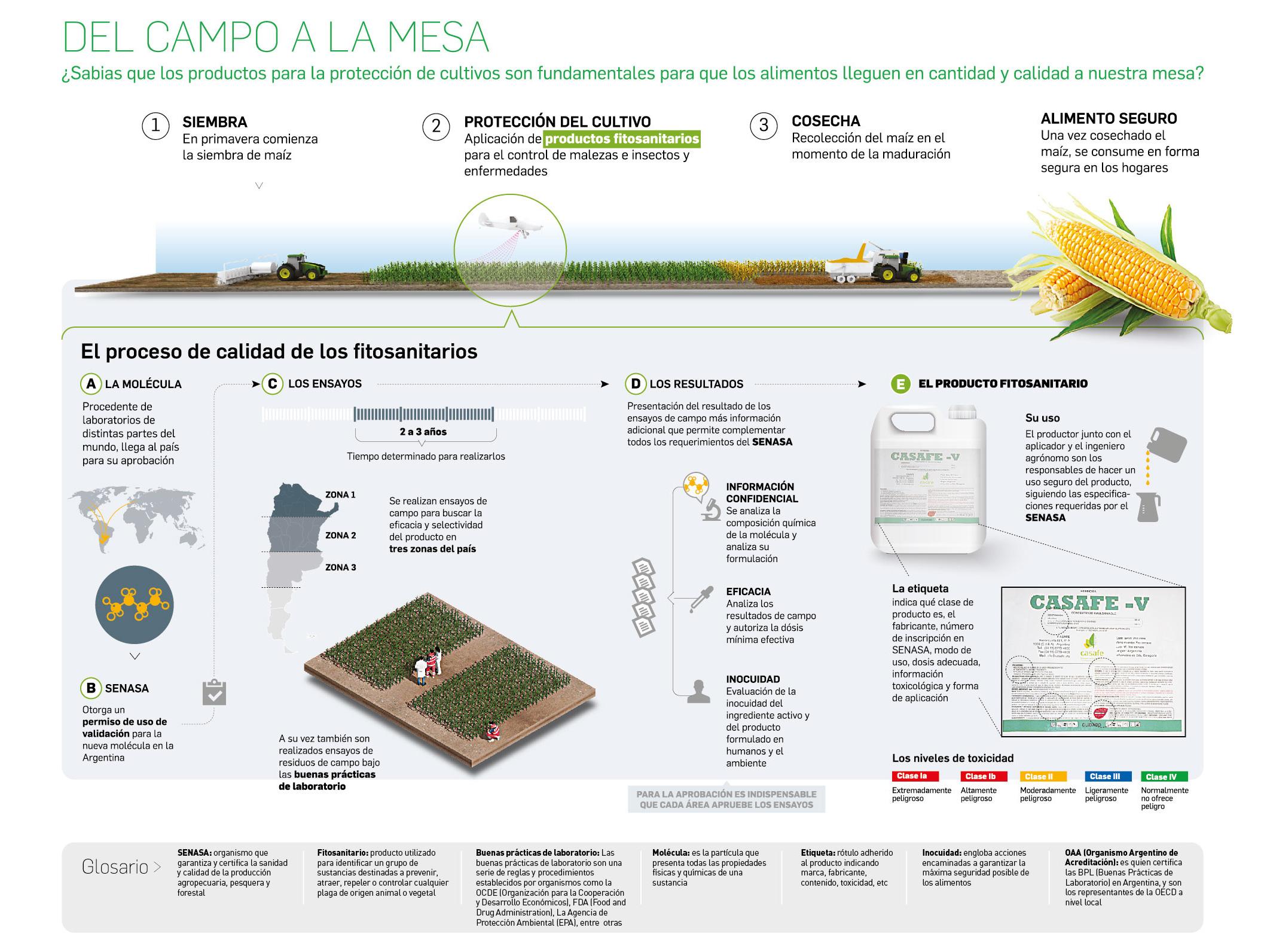 infografia-agroquimicos-seguros