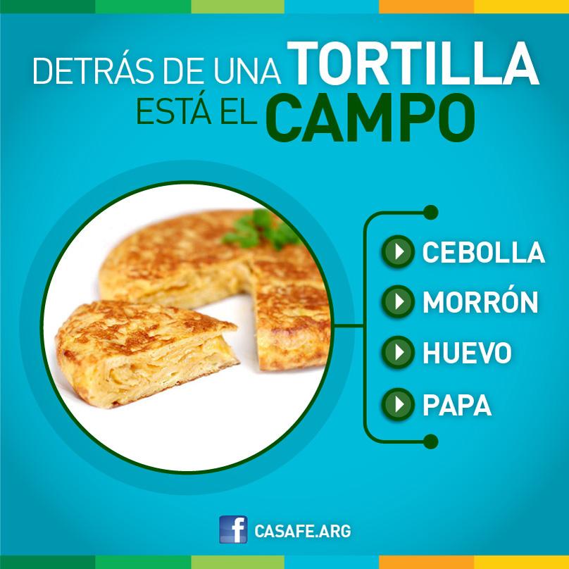 Detras de una tortilla agroquimicos y alimentos