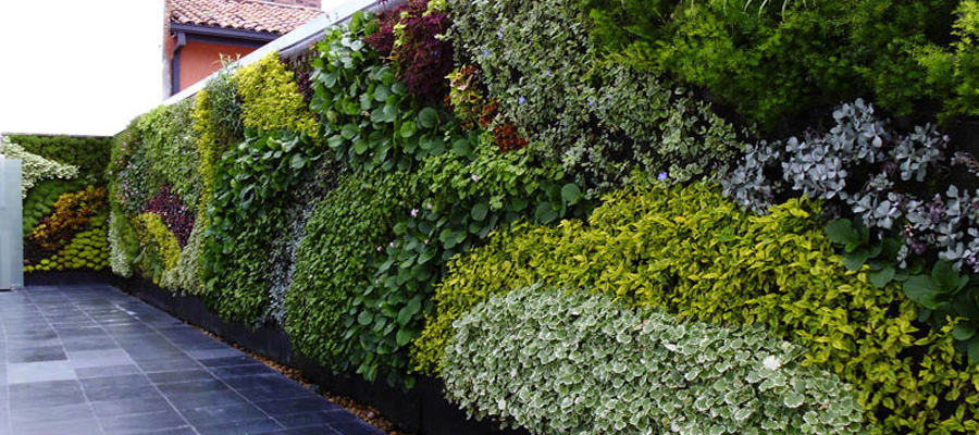 jardin vertical y agroquimicos