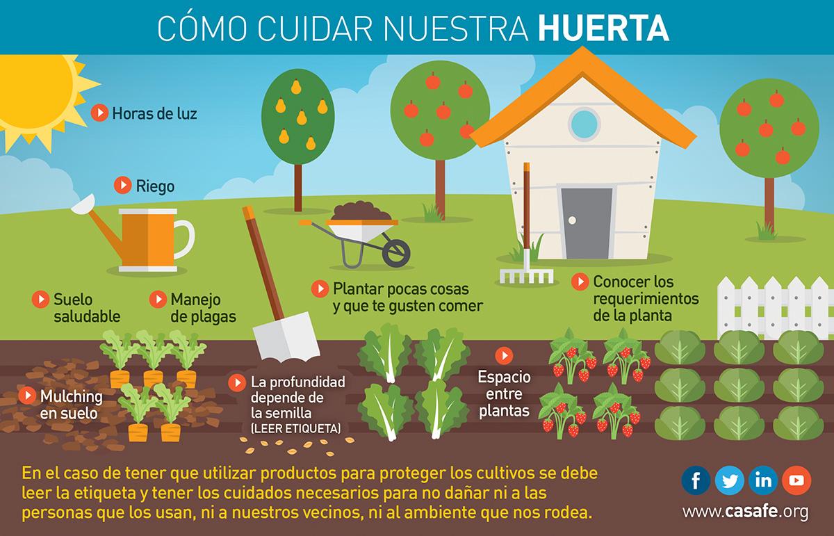 Tu jard n tu huerta casafe - Como cuidar un jardin ...
