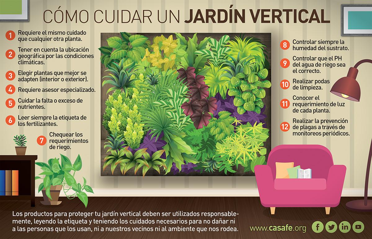 Tu jard n tu huerta casafe for Como se construye un jardin vertical