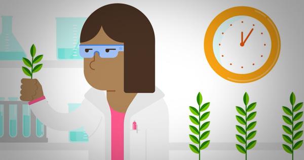 como se desarrolla un producto para la protección de los cultivos