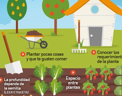 En huertas y jardines, también debemos viralizar las buenas prácticas