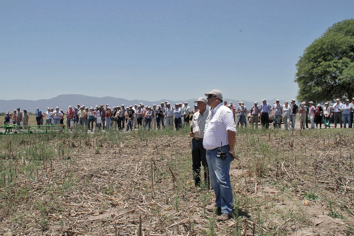 congreso nacional de fitosanitarios buenas paracticas agricolas