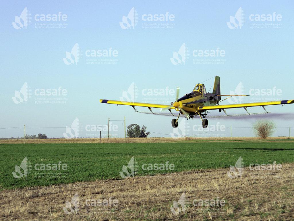 avion aplicando agroquimicos glifosato