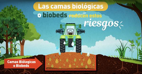Videos Casafe Camas Biológicas para pulverizadoras