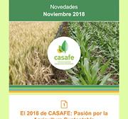 Newsletter Noviembre 2018