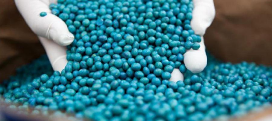 nota-editorial-la-importancia-del-curado-de-semillas-con-fungicidas