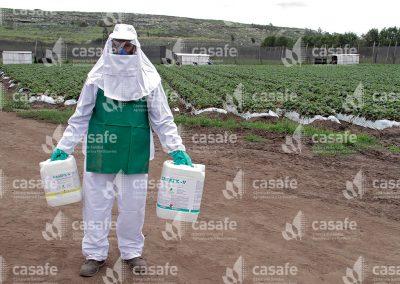 Aplicador con equipo de protección personal en cultivo de frutillas