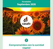 newsletter casafe septiembre 2020