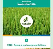 Newsletter Casafe Noviembre 2020
