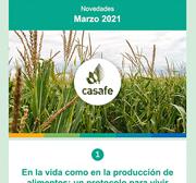 Newsletter Casafe Marzo 2021