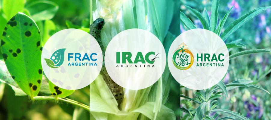 nota3-RACs-Un-espacio-que-trabaja-por-la-sustentabilidad-y-el-cuidado-de-las-tecnologias