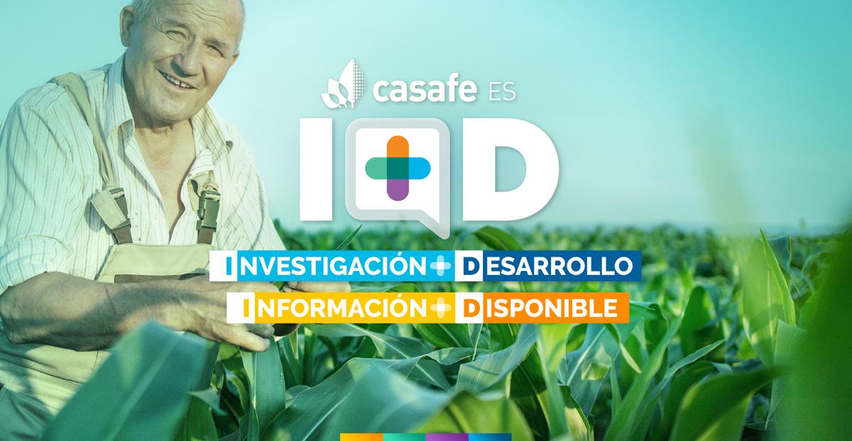 encabezado-informe-casafe-industria-de-fitosanitarios-en-argentina